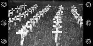 LTC covid deaths