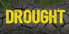 Drought in capitals written over a picture of ground so dry it has cracked.